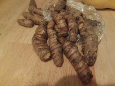 Yellow Turmeric roots