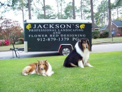 Charles Jackson's Landscaping and Flower Bed Designing