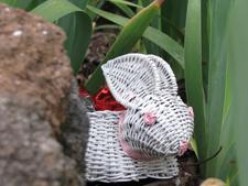 Easter rabbit 2011