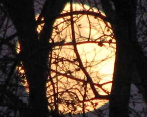 Full  Moon image, 17 Februrary 11