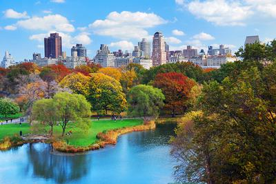 Central Park--New York City