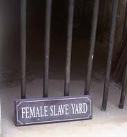 The female dungeon 2008